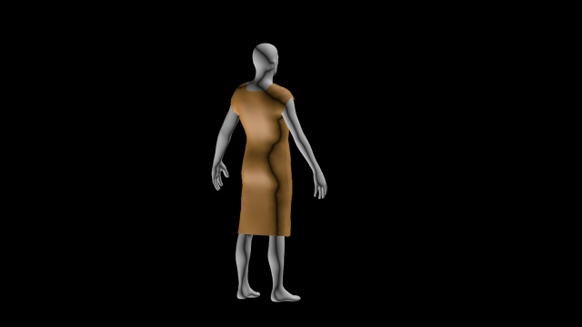 dress simulation